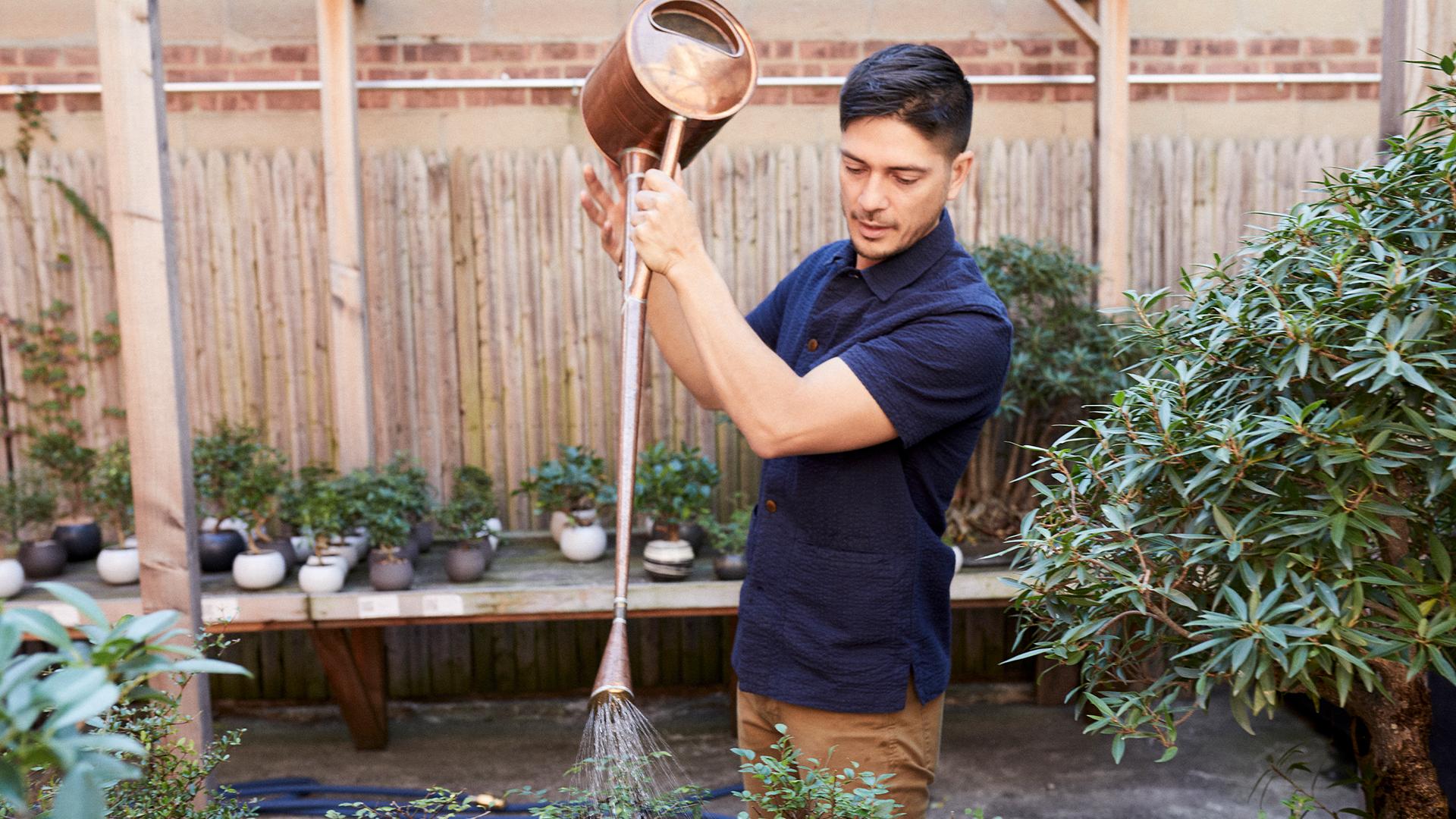 Matt Puntigam tends to his Bonsai garden